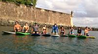 San Juan Paddle Board Tour