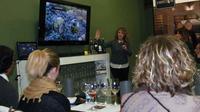 Toledo Wine Show in Historical Center
