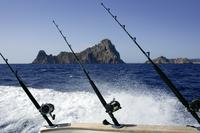 Punta Cana Half-Day Deep Sea Fishing Charter