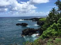 Full-Day Maui Tour: Road to Hana Tour
