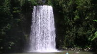 Atherton Tablelands Waterfalls Day Trip from Cairns