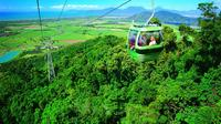 Kuranda Skyrail Rainforest Cableway, Exotic Fruit Orchard and Golden Drop Winery Day Trip from Cairns