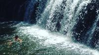 Rainforest and Waterfall Day Trip from Cairns Including Crater Lakes, Millaa Falls and Zilliee Falls
