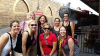 VIP Tour of Walt Disney World Resort, Universal Studios Orlando or SeaWorld Parks