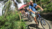 Countryside Bangkok and a Floating Market Tour by Bicycle Including Lunch