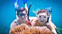 Snorkeling Day Trip to Koh Tao from Koh Samui