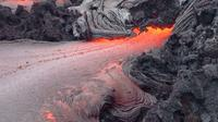 Private Tour: Hawaii Volcanoes National Park Adventure