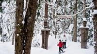 Medicine Trail Snowshoe Tour