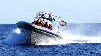 Helsinki Archipelago High-speed Boat Cruise