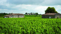 Private Half Day Wine Tour from Bordeaux  Private Car Transfers
