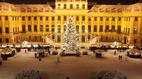 Full-Day Private Excursion to the Vienna Christmas Markets from Budapest