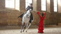 Equestrian Show with Flamenco and Traditional Tapas