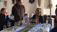 Olive Oil and Vineyard Day Experience in the Tramuntana Mountains