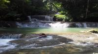 Private YS Falls Tour from Montego Bay