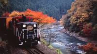 Sagano romantic train-autumn leaves spots-Nanzenji-Fushimi Inari Shrine