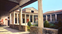 Skip-the-lines Private full day tour of Ancient Pompeii and Herculaneum wit