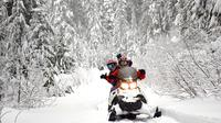 Whistler Wilderness Adventure Snowmobile Tour
