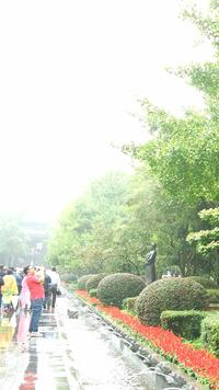 Private Day Trip to Dujiangyan Irrigation System and Mount Qingcheng from Chengdu