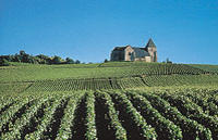 Explore the Champagne region on your day trip from Paris