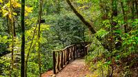 La Tigra National Park Day Tour From Tegucigalpa