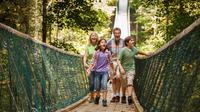 Discover Foxfire Mountain Adventure Park Activity Pass