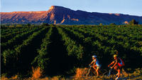 Bike The Colorado Wine Country Self-guided Day Tour