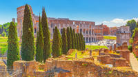 1-Hour Skip-the-Line Small-Group Colosseum Tour in Rome