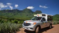 Moorea Shore Excursion: 4WD Tour Including Belvedere Pineapple Farm and Magic Mountain