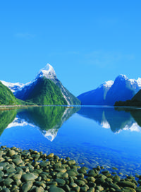 3-Day Milford Sound, Te Anau, Taieri Gorge and Dunedin Tour from Queenstown