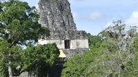 Day Trip Tikal National Park from Flores