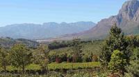 Cape Winelands Tour Delaire Graff wine estate*