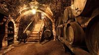 Chianciano Evo Oil and Montepulciano Wine Tour Shore Excursion from Civitavecchia Port