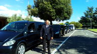 Daytrip: pickup Florence dropoff Fiumicino FCO Airport with Orvieto Tour option Private Car Transfers