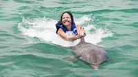 Punta Cana Explorer Dolphin Swim