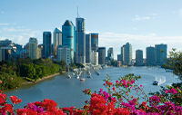Brisbane Sightseeing Tour*