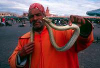 4-Day Morocco Tour: Fez, Meknes, Rabat and Tangier