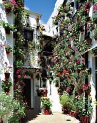 Old Jewish Quarter, Cordoba*