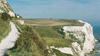Private Shore Excursion: White Cliffs of Dover Half-Day Tour from Dover
