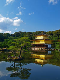 Kyoto Day Tour of Golden Pavilion, Nijo Castle and Sanjusangendo from Osaka