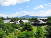 Kyoto Day Tour of Golden Pavilion, Nijo Castle and Sanjusangendo from Osaka