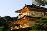 Kyoto Morning Tour of Kinkakuji Temple, Nijo Castle and Kyoto Imperial Palace from Osaka