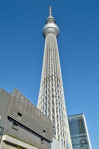Tokyo Skytree, Asakusa and Central Tokyo Sightseeing Tour
