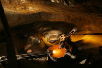 Krakow Super Saver: Wieliczka Salt Mine Half-Day Trip plus Private Krakow Tour by Electric Car