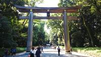 Tokyo Private Custom Full-Day Walking Tour