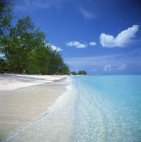 West Island Highlights Tour in Grand Cayman