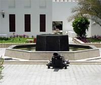 Abu Dhabi City Sightseeing Tour - The Arabian Jewel