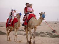 Dubai Shore Excursion: Private 4x4 Desert Adventure Safari