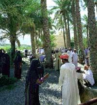 Muscat Shore Excursion: Private Nizwa Day Trip
