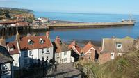 Full-Day North Yorkshire Moors and Whitby in Winter from York