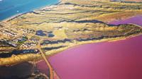 Pink Lake Fixed-Wing Scenic Flight from Geraldton